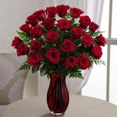 in love with red roses large