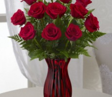in love with red roses small