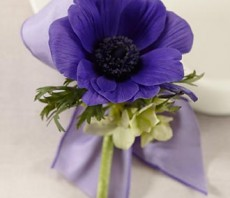 purple passion boutonniere