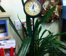 Garden Clock on Step-In Stand