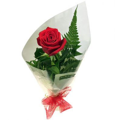 Single wrapped rose